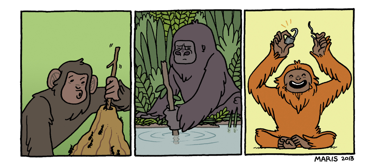 "The non-human characters in <em>Primates </em>have been documented using tools on many occasions:  Chimps ""fishing"" for termi"