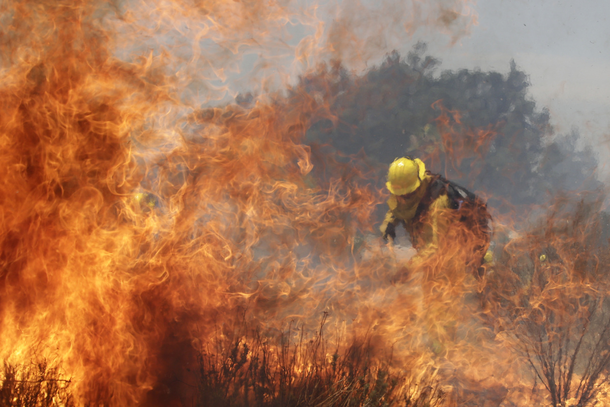 A firefighter battles a wildfire on Thursday, Aug. 8, 2013, in Cabazon, Calif. A growing wildfire chewed through a rugged Sou