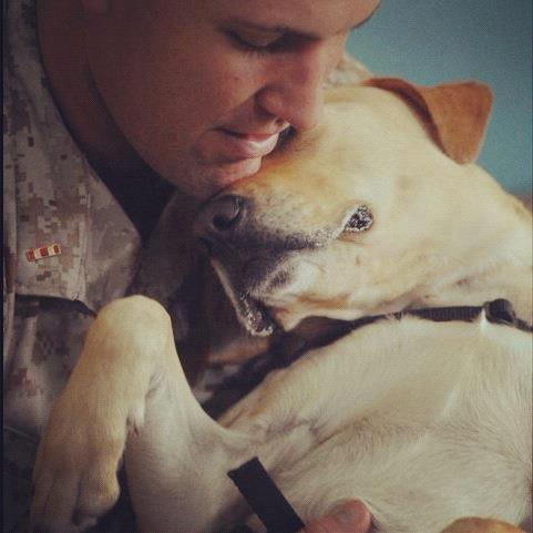 "<a href=""https://www.facebook.com/exploredogs"">Dog Bless You</a> (Dog Bless You / <a href=""http://explore.org/#!/videos/playe"