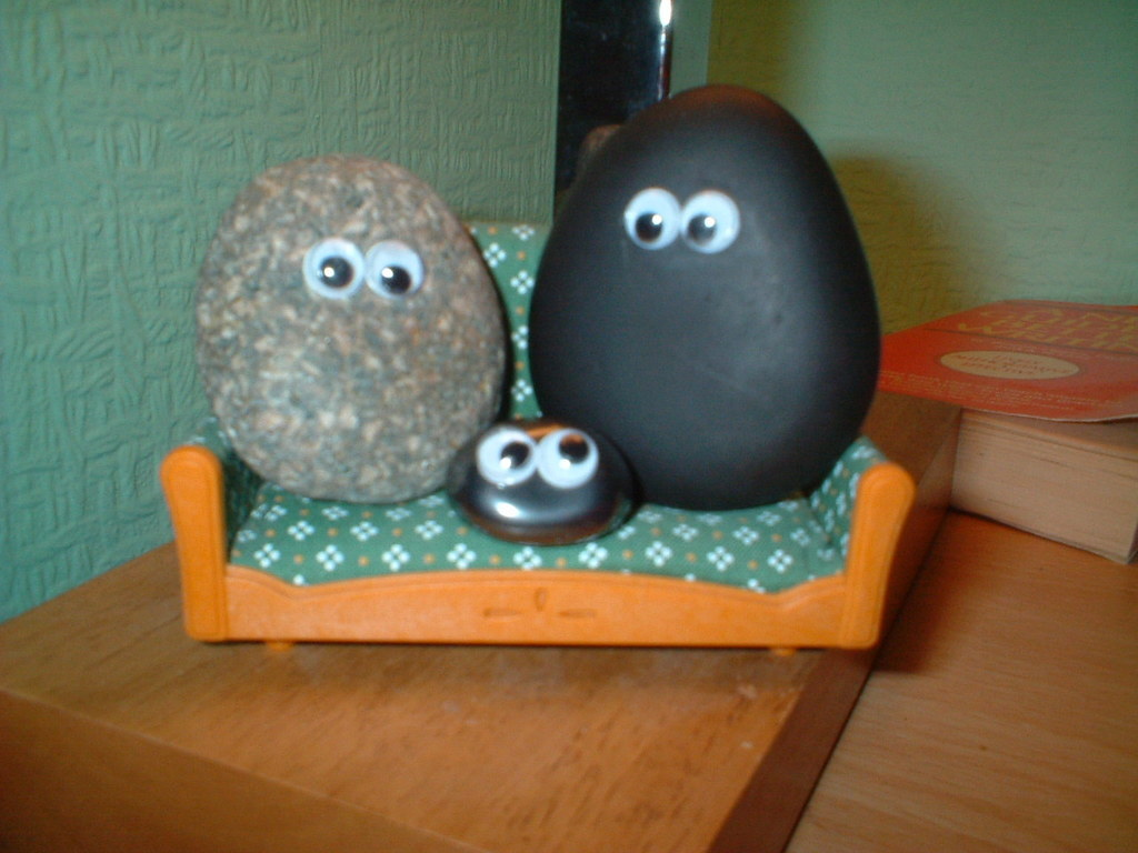 "<span style=""text-decoration:underline;""><strong>The Pet Rock:</strong></span>  In 1975, Gary Dahl came up with an idea for t"