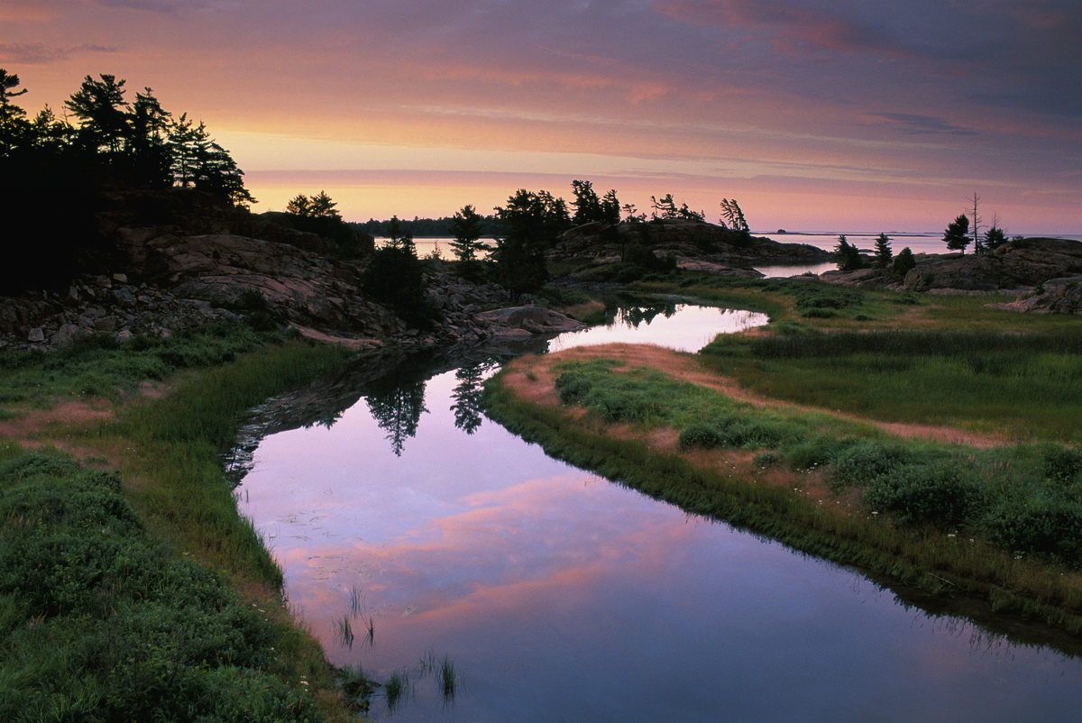 Predawn color over granites and white pine at mouth of Chikanishing Creek in Georgian Bay, Killarney Provincial Park, Ontario