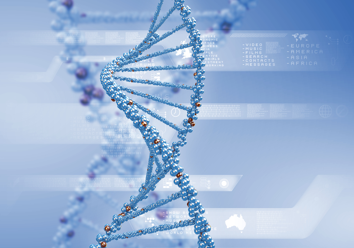"""Results of a massive gene analysis, published last month in the journal <em>Nature</em>, shows that there are <a href=""""http:/"""
