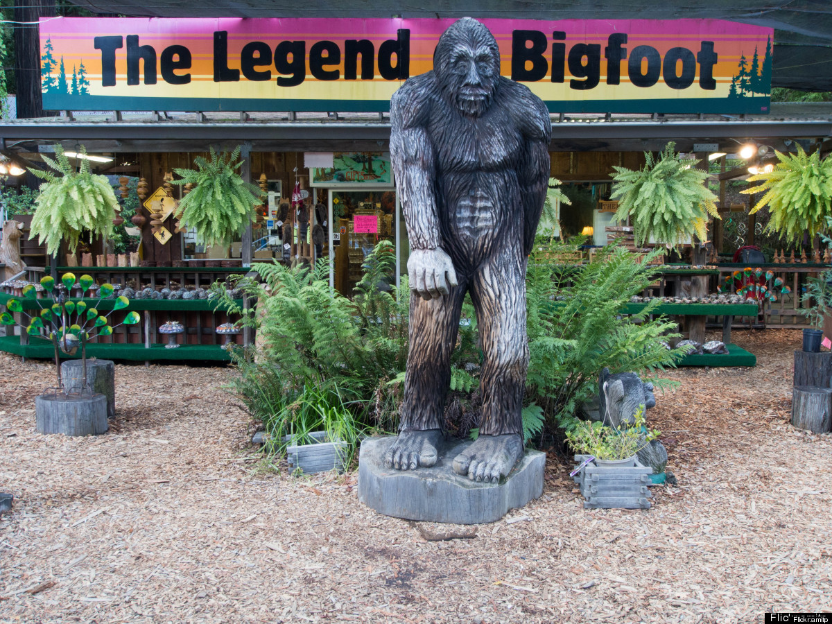 He's big, he's hairy and he's known the world over. Bigfoot, also known as sasquatch, is an ape-like creature that lives in f