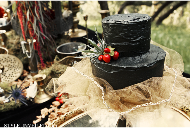 """A spooky black cake bucks tradition and looks effortlessly chic. Just don't spill it on your gown!  Photo by: <a href=""""http:/"""