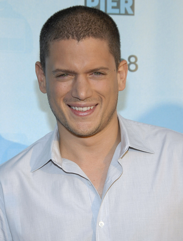 """Prison Break"" star Wentworth Miller <a href=""http://www.huffingtonpost.com/2013/08/21/wentworth-miller-comes-out-gay_n_37923"