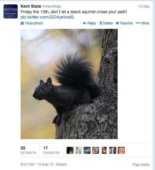 """At Kent State, the black squirrel has been an unofficial <a href=""""http://www.ksualumni.org/s/401/index.aspx?sid=401&gid=1&pgi"""