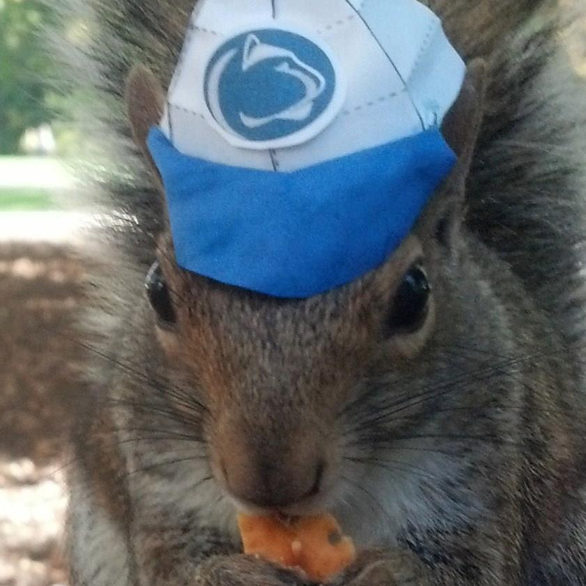 """Penn State loves their squirrels. They have a popular Facebook page <a href=""""http://www.huffingtonpost.com/2013/01/10/sneezy-"""