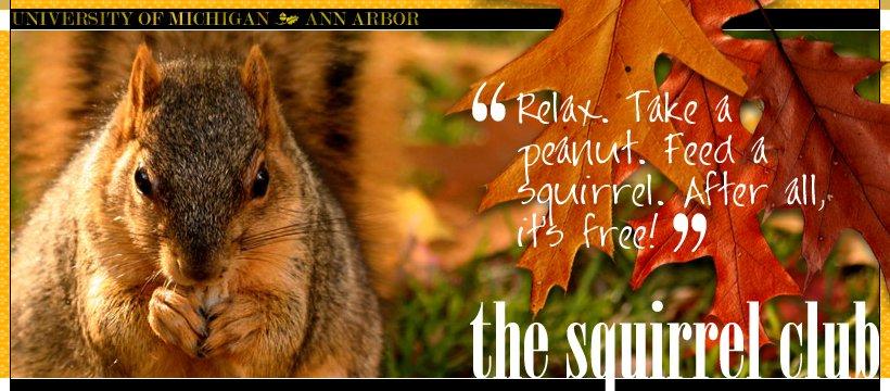 "The University of Michigan in Ann Arbor has ""<a href=""http://www.michigansquirrels.com/"" target=""_blank"">The Squirrel Club</a"
