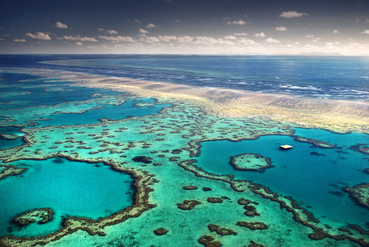 The rapid decline of the world's coral reefs appears to be accelerating, threatening to destroy huge swathes of marine life u