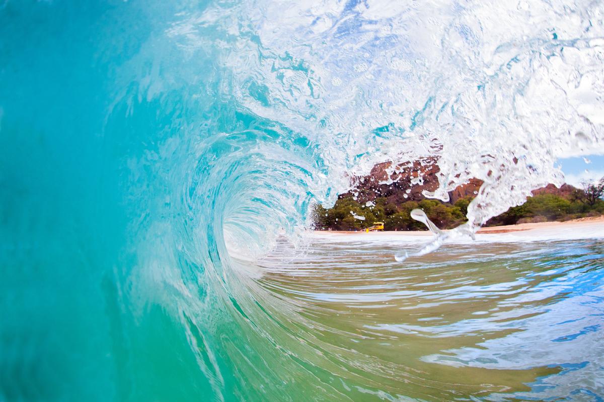 aqua turquoise fresh rolling wave breaking in the ocean at makena beach, maui, hawaii.shorebreak barrel wave