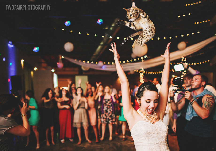 "Bouquets are old and busted. All the hippest brides are <a href=""http://bridesthrowingcats.com/"" target=""_blank"">throwing cat"
