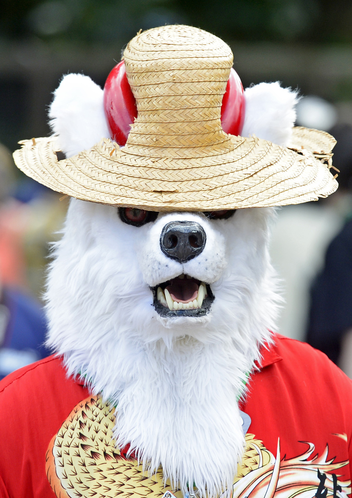 A participant dressed in a fanciful animal costume walks in the Magdeburg zoo during the opening of the Eurofurence Conventio