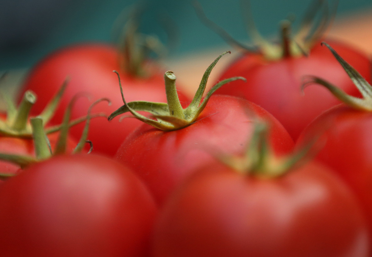 Tomatoes contain lycopene, which is an antioxidant that may lower the risk of heart disease, macular degenerative disease (wh