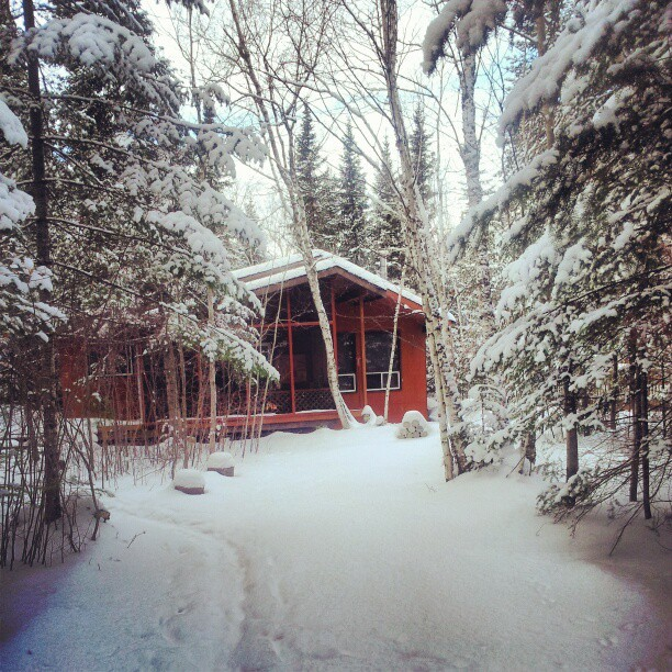 Escape the holiday season--or post holiday blues--and head to a cabin in the woods for some scenic solitude...