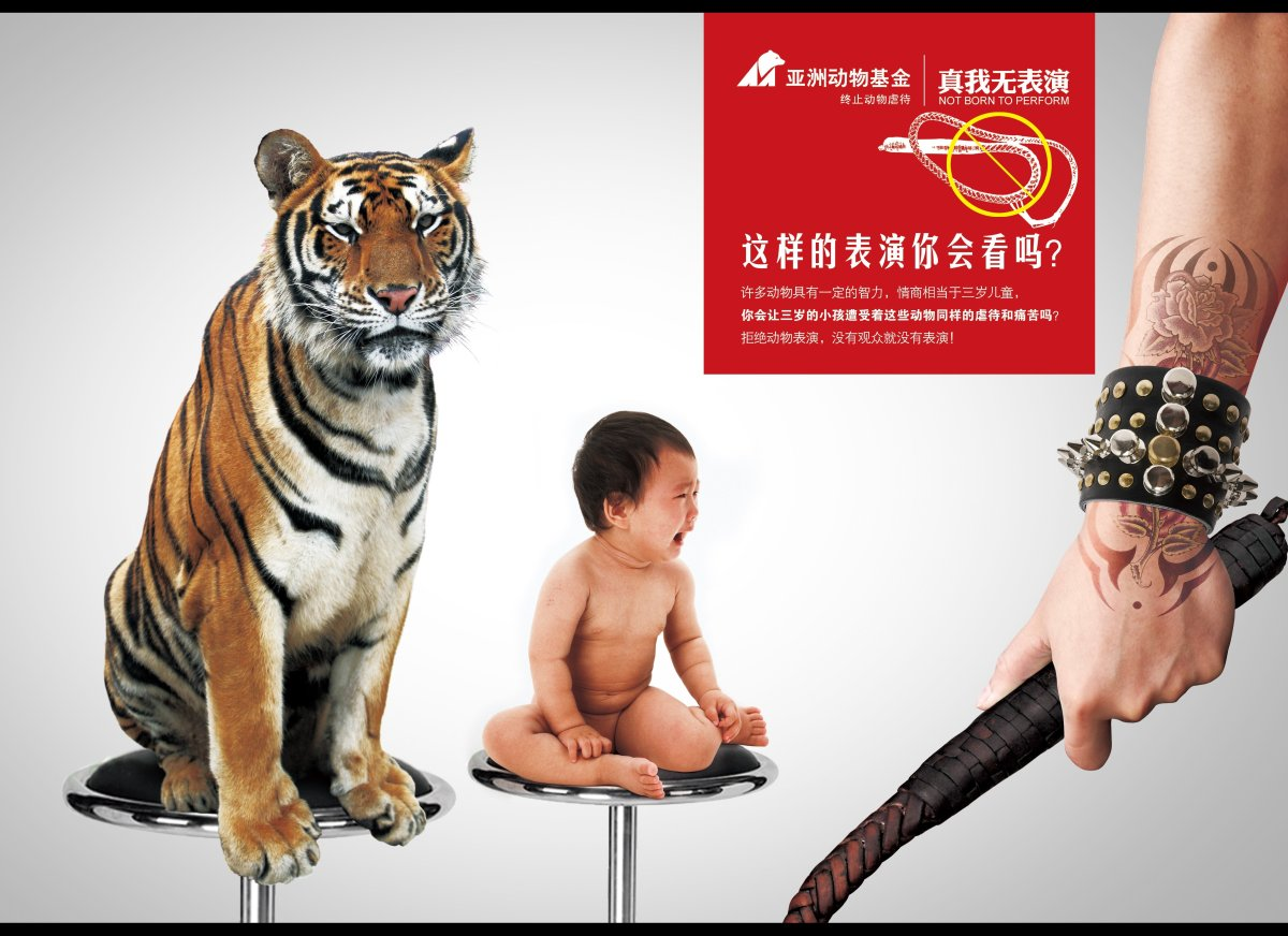 When Animals Asia launched a competition in China for the best images to use as posters to protest against animal performance
