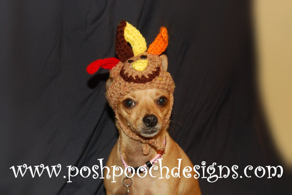 """Please, don't look at me."" <br><br><em><a href=""http://www.etsy.com/listing/163684471/turkey-dog-hat-turkey-dog-beanie-small"