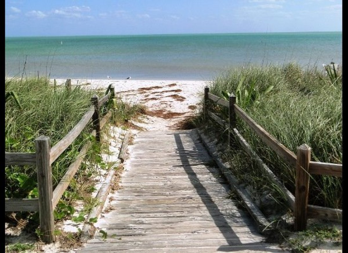Bahia Honda State Park features the best beaches in the Florida Keys and superb snorkeling, plus a bounty of shore and wading