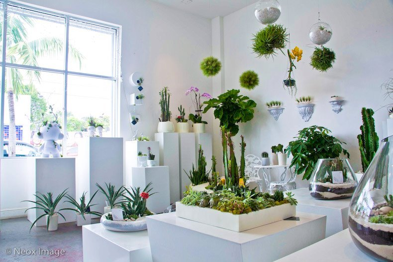 We can't say enough about designer Paloma Teppa's green creations. From giant deer sculptures holding gorgeous plants to wall