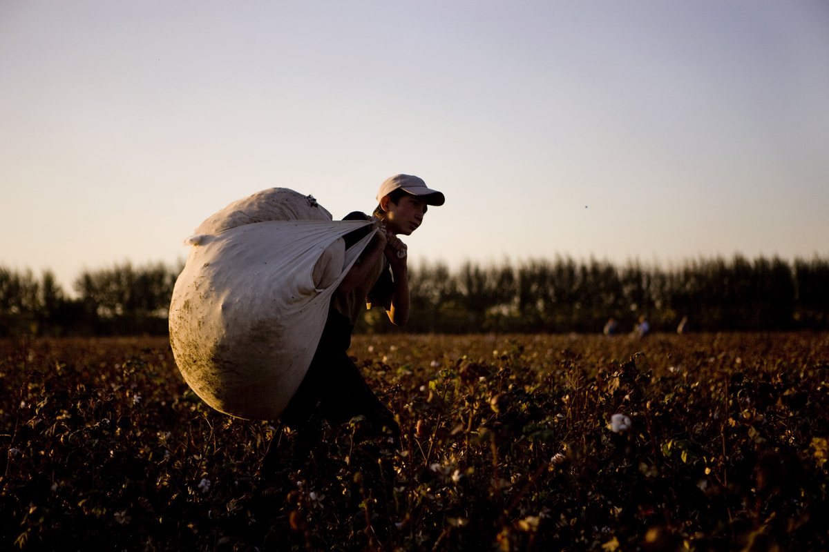 While we peruse malls for the hippest new fashion trends, 1.5 million people are forced to work in Uzbekistan's cotton fields