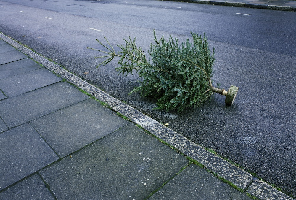 When the streets start to look like a pine graveyard.