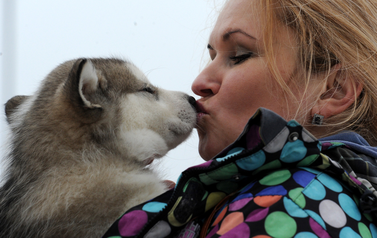 A woman shares a tender moment with her pet during international dog sled race 'Zavirukha' (Snow Storm)  in the  Belarus capi