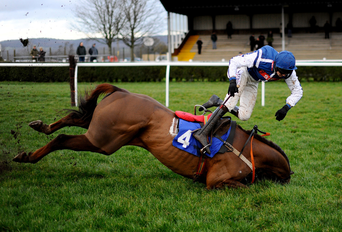 Brendan Powell falls from Flaming Charmer at the last in The Higos Insurance Services Street Novices' Limited Handicap Steepl