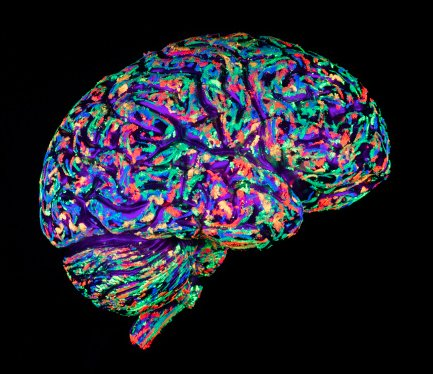 Another area garnering significant attention is brain imaging -- not just for its potential to help researchers better unders