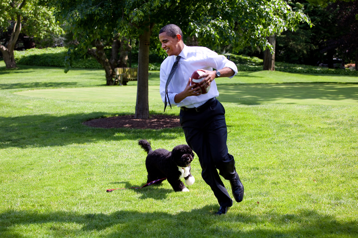 In this handout from the The White House, U.S. President Barack Obama plays football with the family dog Bo on the South Lawn