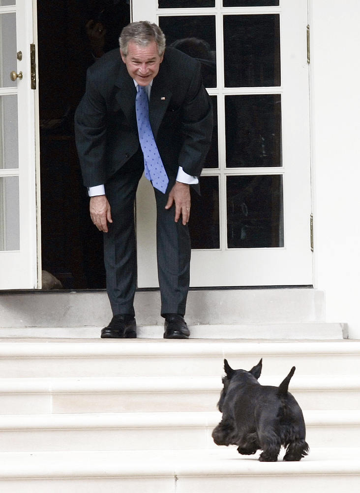 U.S. President George W. Bush calls for his dog Barney as he stands on the West Wing Colonnade at the White House in Washingt
