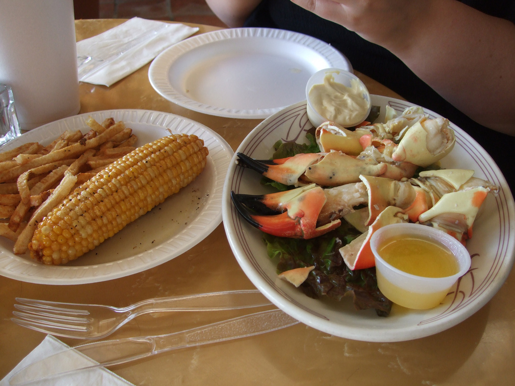 Stone crabs are one of the few things that make Florida look good -- besides all the beaches. And Key West makes up 40 percen