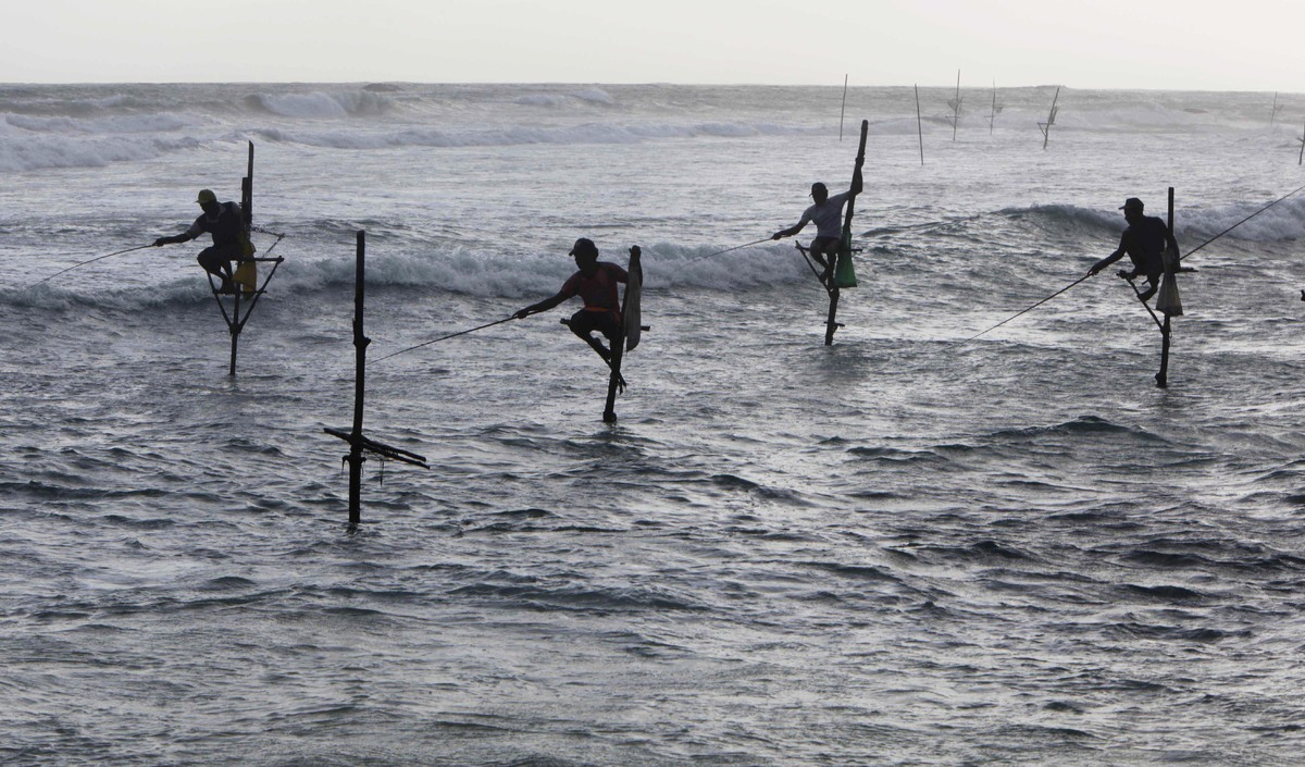 Sri Lankan stick fishermen attempt to catch fish in the late afternoon at Ahangama Bay, 25 kilometers (16 miles) south of Gal