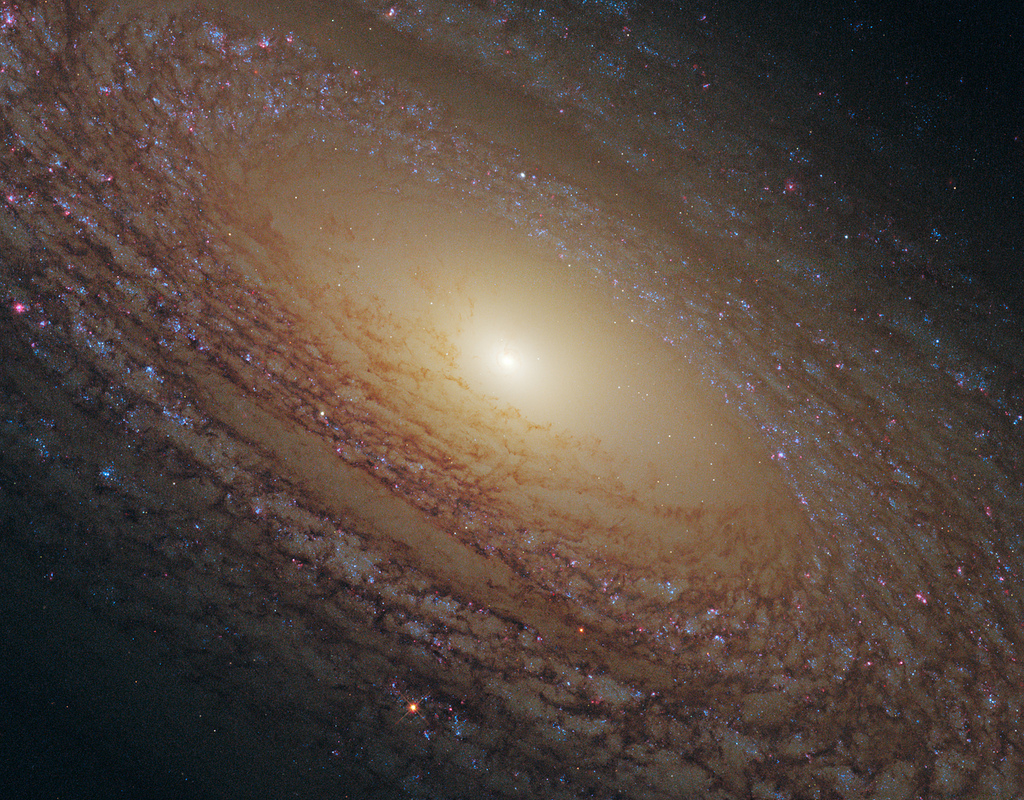 The Hubble Space Telescope revealed this majestic disk of stars and dust lanes in this view of the spiral galaxy NGC 2841. A