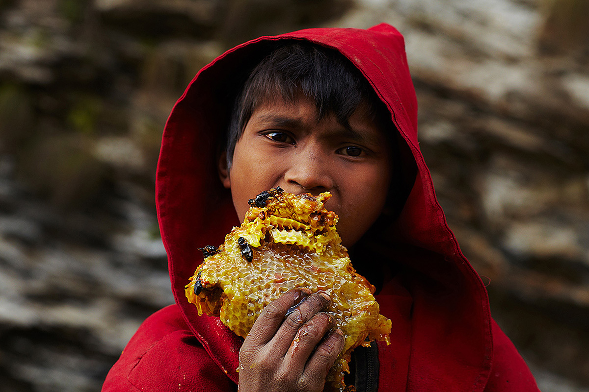 A young boy from the nearby village feasts on a piece of freshly cut honeycomb that has fallen to the ground.