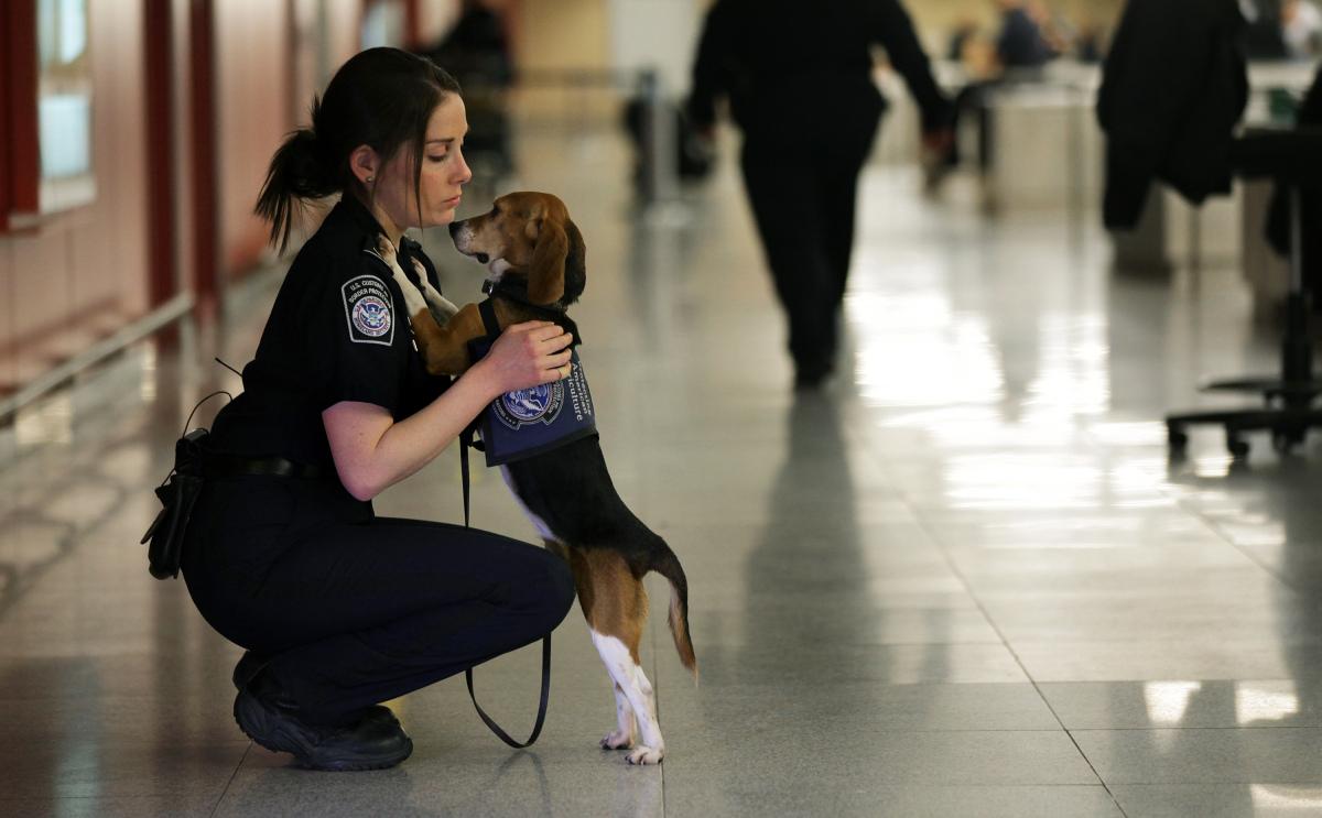(AP Photo/Craig Ruttle)