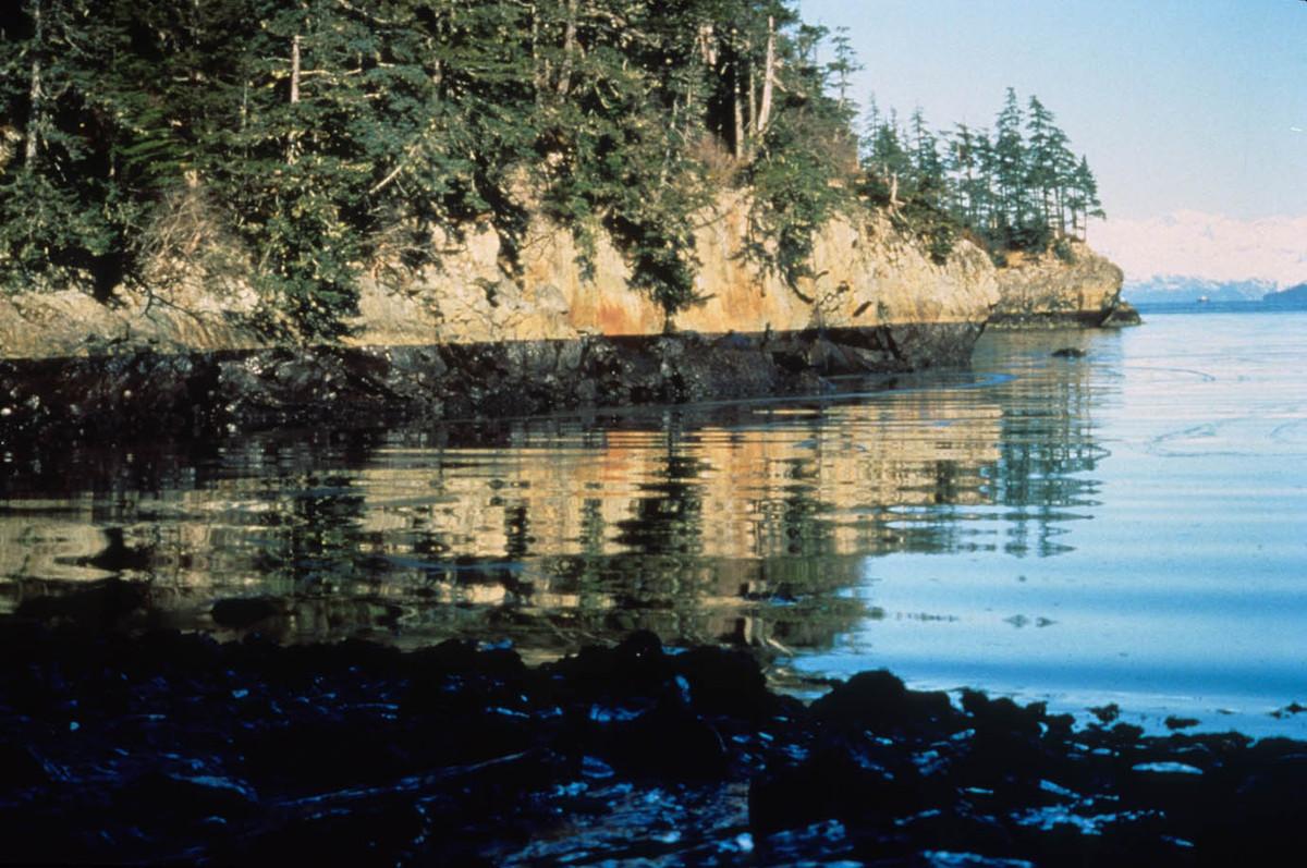"(Photo courtesy of <a href=""https://www.flickr.com/photos/arlis-reference/5012705055/"" target=""_blank"">Alaska Resources Libra"