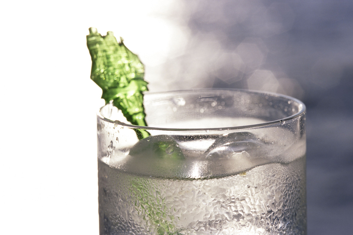 Gin is meant for cocktails. You don't ever take shots of gin like you would tequila and you wouldn't really sip on it like wh