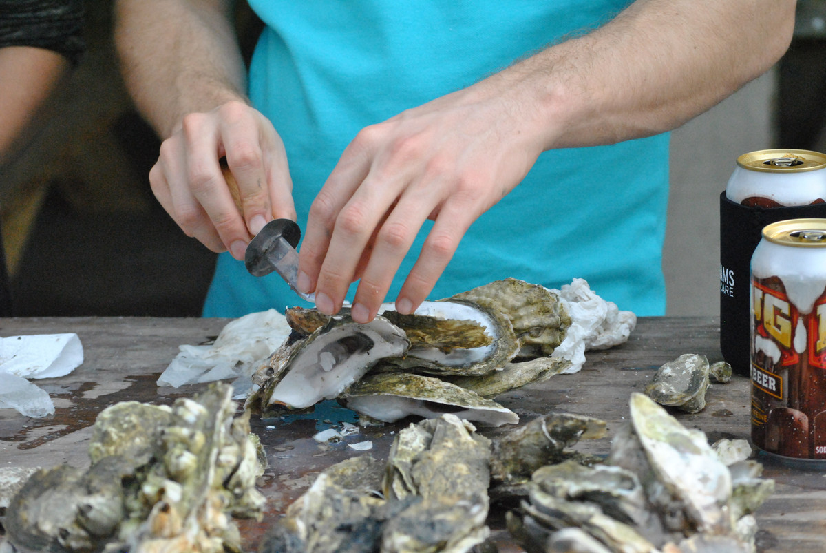 During chilly winter evenings, many families in the south gather 'round the grill to shuck oysters and share stories. This co