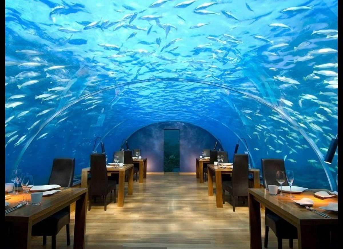 <strong>UNDER THE SEA Ithaa Undersea Restaurant Rangali Island, Maldives </strong> Situated more than 16 feet below sea l