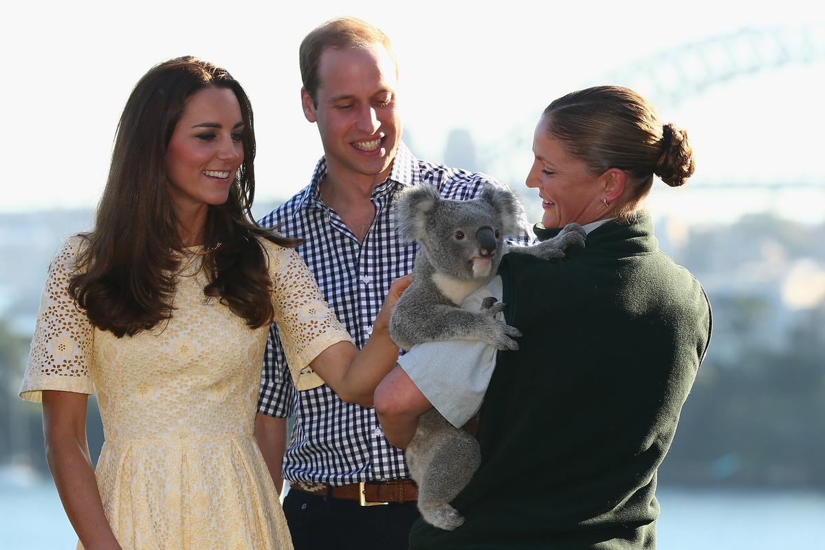SYDNEY, AUSTRALIA - APRIL 20:  Catherine, Duchess of Cambridge, and Prince William, Duke of Cambridge meet a Koala at Taronga