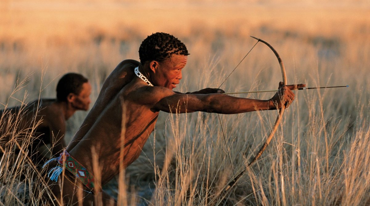 Experience an authentic encounter with the true and traditional cultures of Africa. Beginning in Cape Town, witness the towns
