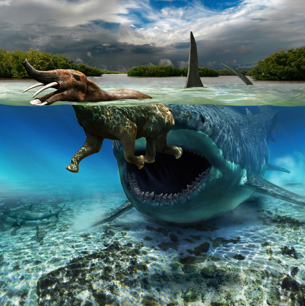 The Miocene epoch (23.03 to 5.332 million years ago) boasted a real life sea monster, Carcharocles megalodon. Whereas the gia