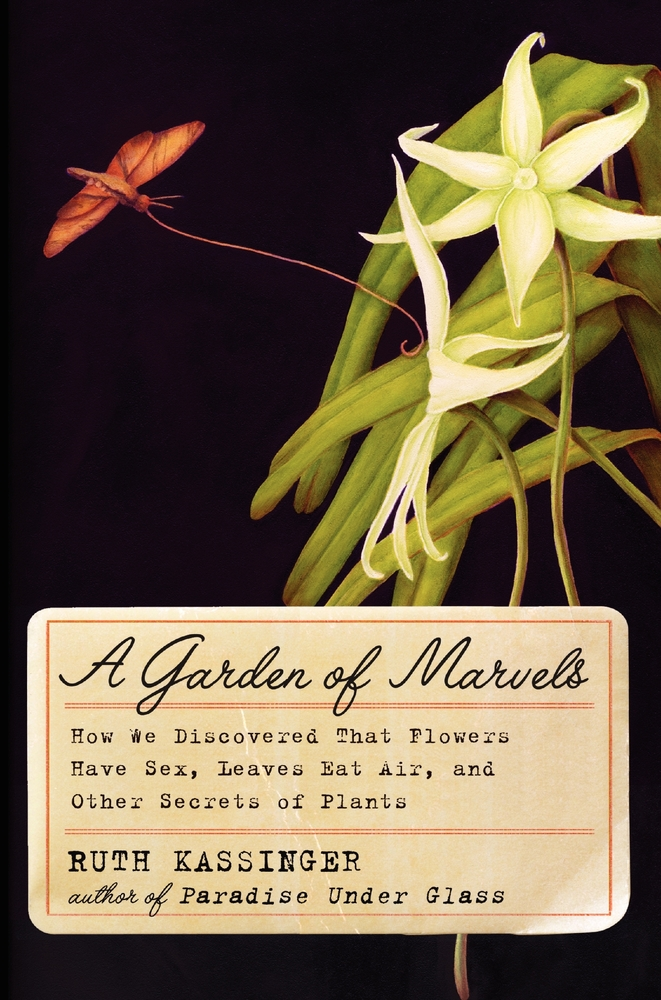 """""""A delightful book, fun to read and share—green thumb not required.""""  From award-winning history and science writer Kassinger"""