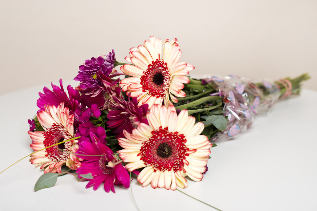 Here are 6 ways anyone can transform cheap grocery store flowers gerbera daisies before izmirmasajfo Images