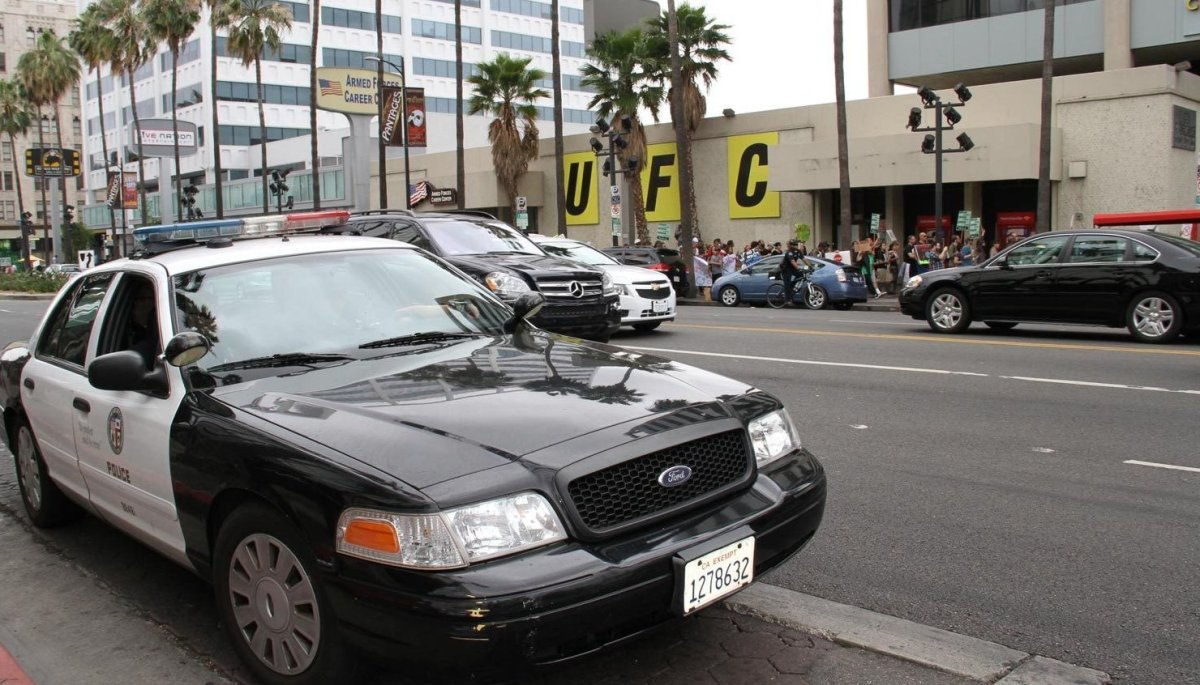 Convening at 10 A.M. for a rally near Elderberry Cafe on Sunset Blvd., the march went up to Hollywood Blvd., stopping for a d