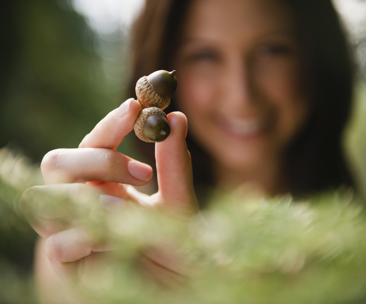 Centuries ago in Britain, women would keep acorns in their pockets with the belief that doing so would help them maintain a y