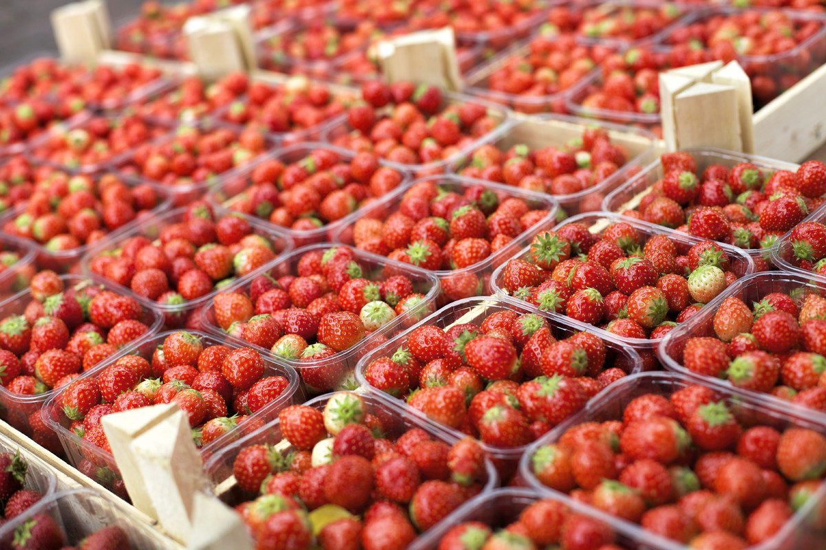 """Strawberries are the crown jewel of summer berries. These berries (which aren't actually berries, it's true) are <a href=""""htt"""