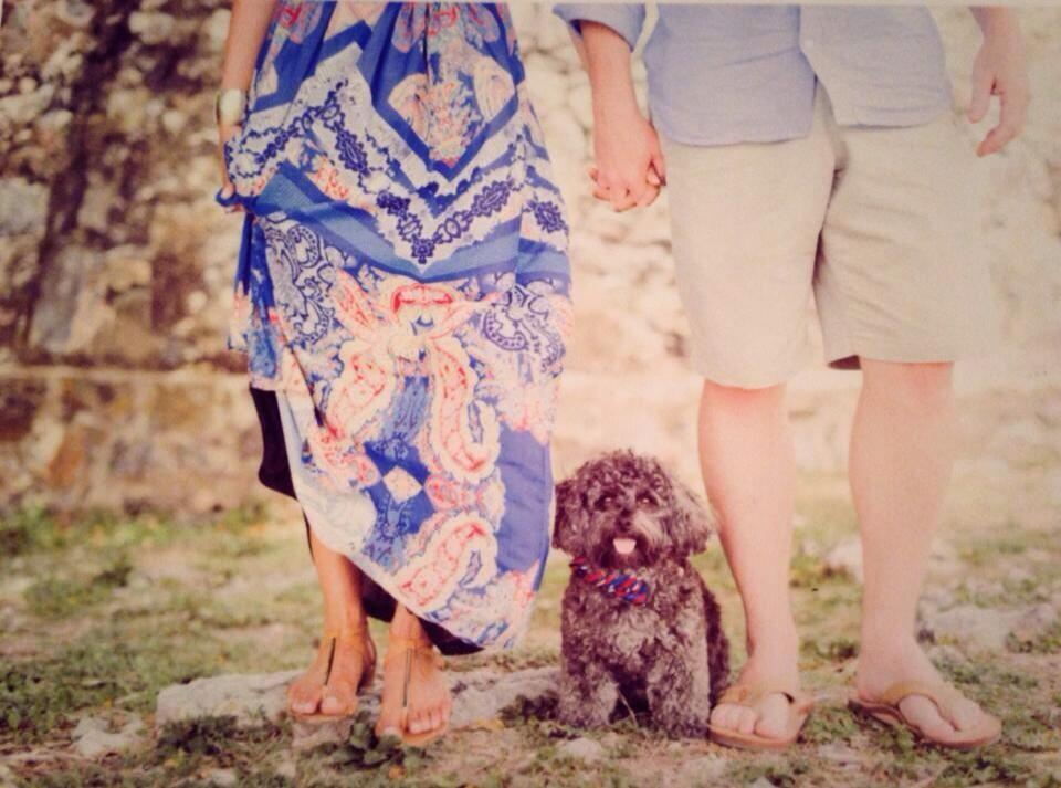 """""""My friends married in St. John and their pup was the ring boy."""" - @ianinnsb"""