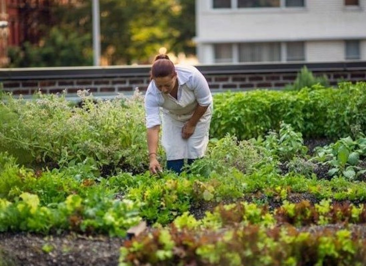 <em>Photo Credit: Courtesy of Rosemary's</em>