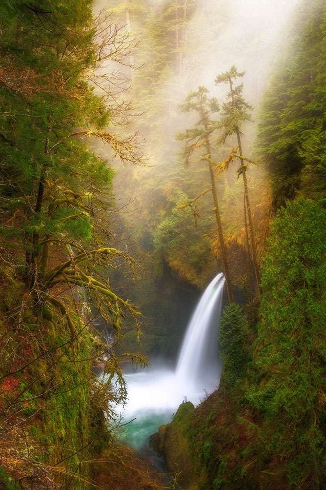 Metlako Falls, Columbia River Gorge National Scenic Area, Oregon. Winner: Classic View.