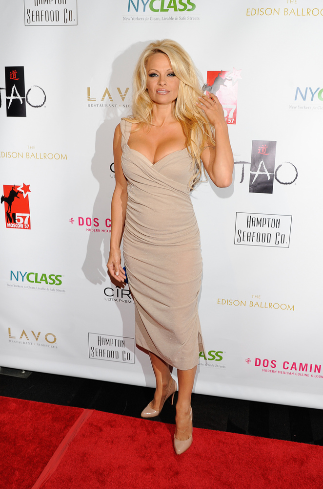 NEW YORK, NY - OCTOBER 23:  Pamela Anderson attends 'A Night of New York Class' on October 23, 2012 in New York City.  (Photo